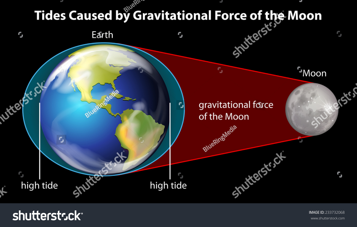 Gravitational Pull of the Planets - Planet Facts