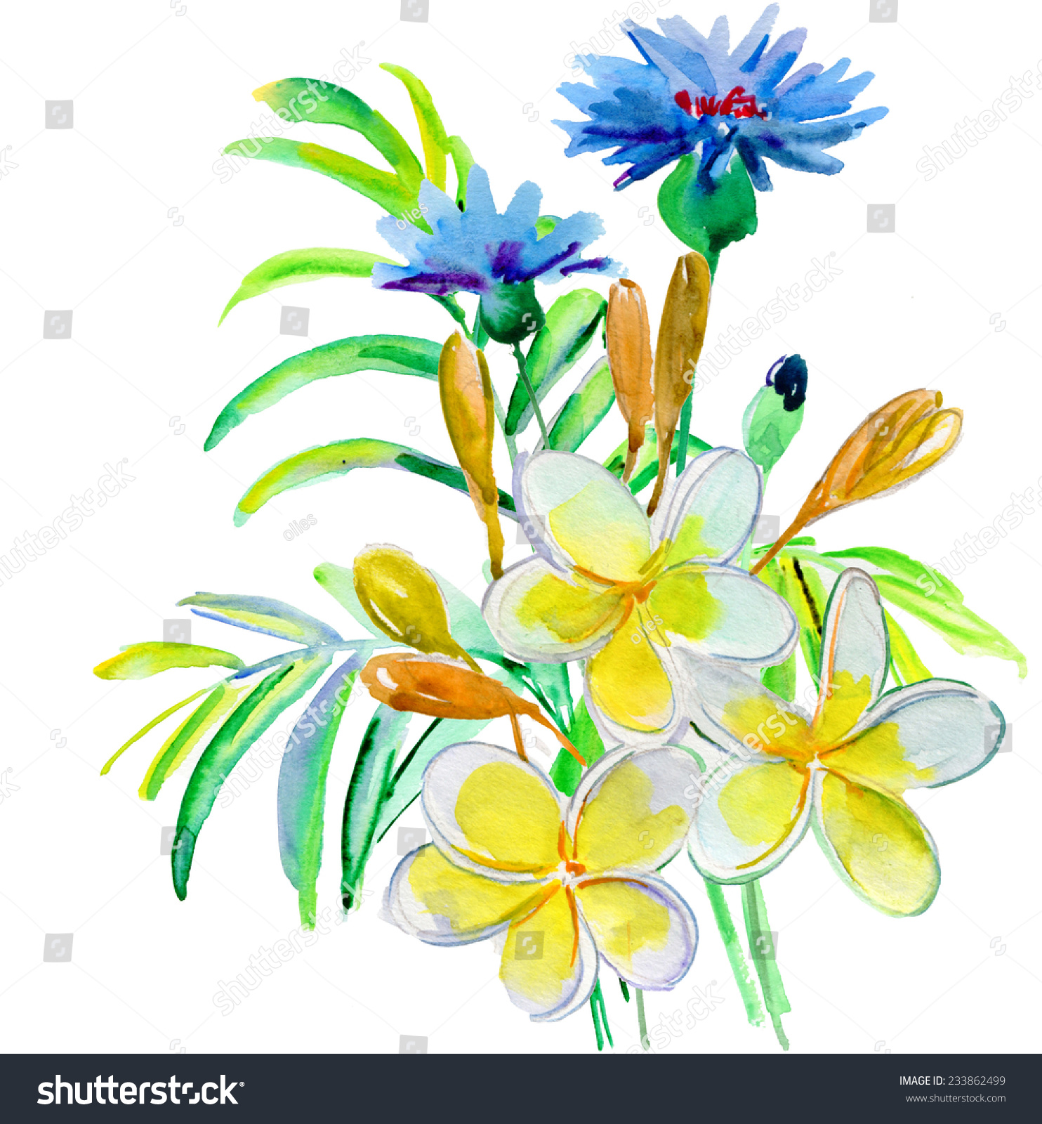 Watercolor Illustration Flower Bouquet Simple Background Stock Illustration 233862499