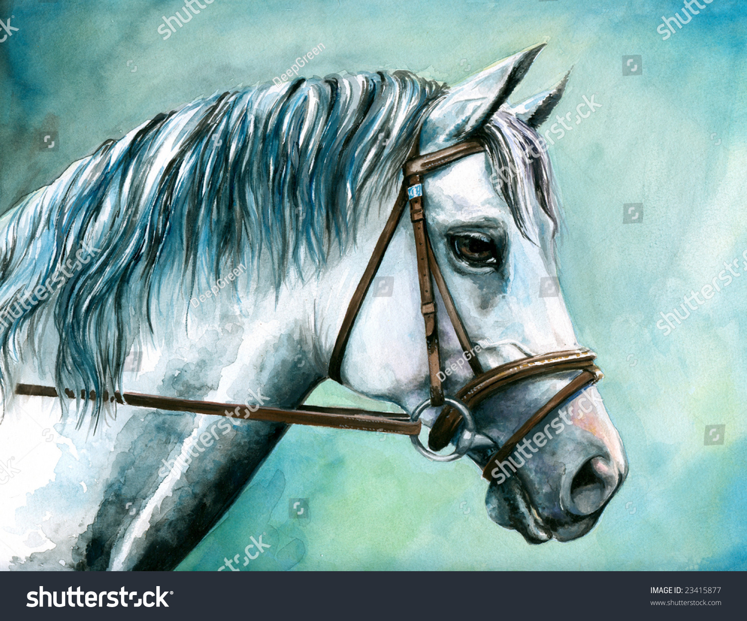 Portrait Of White Horse Watercolor Painted. Stock Photo ...