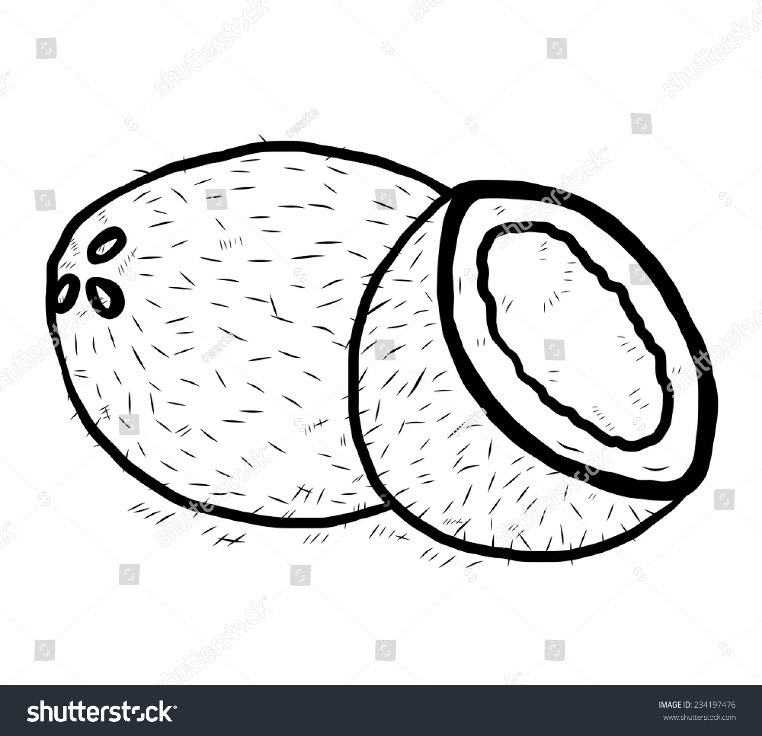 Coconut Cartoon Vector And Illustration Black White Hand Drawn Sketch Style