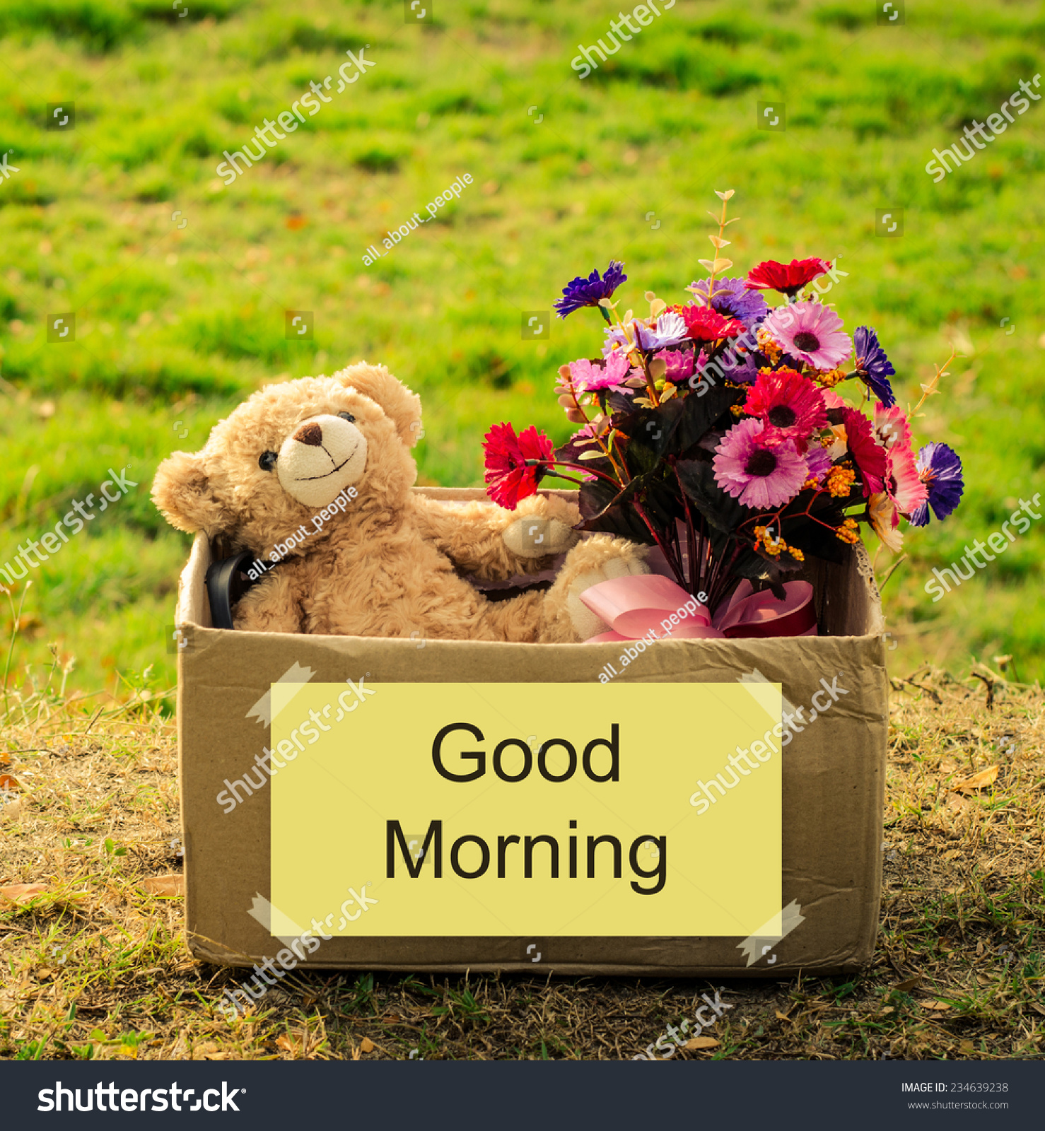 Bear Flower Bouquet Box Good Morning Stock Photo Edit Now
