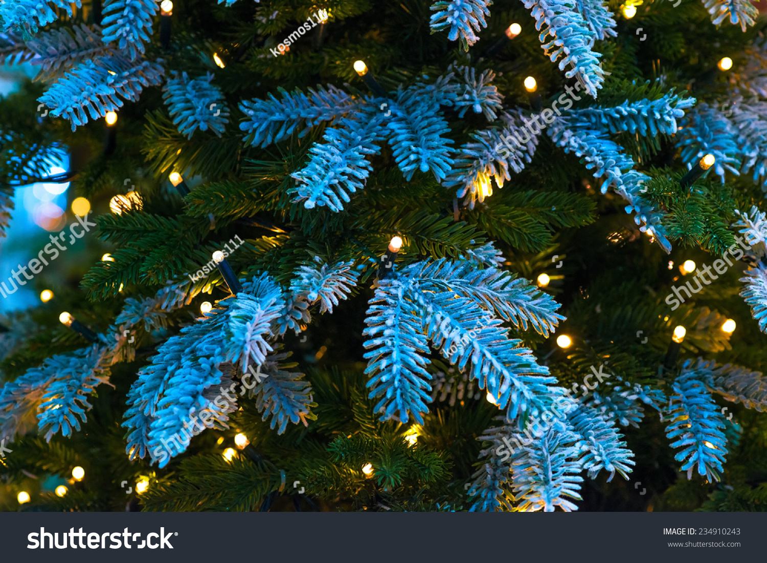 snow covered branches of christmas trees close up stock. Black Bedroom Furniture Sets. Home Design Ideas