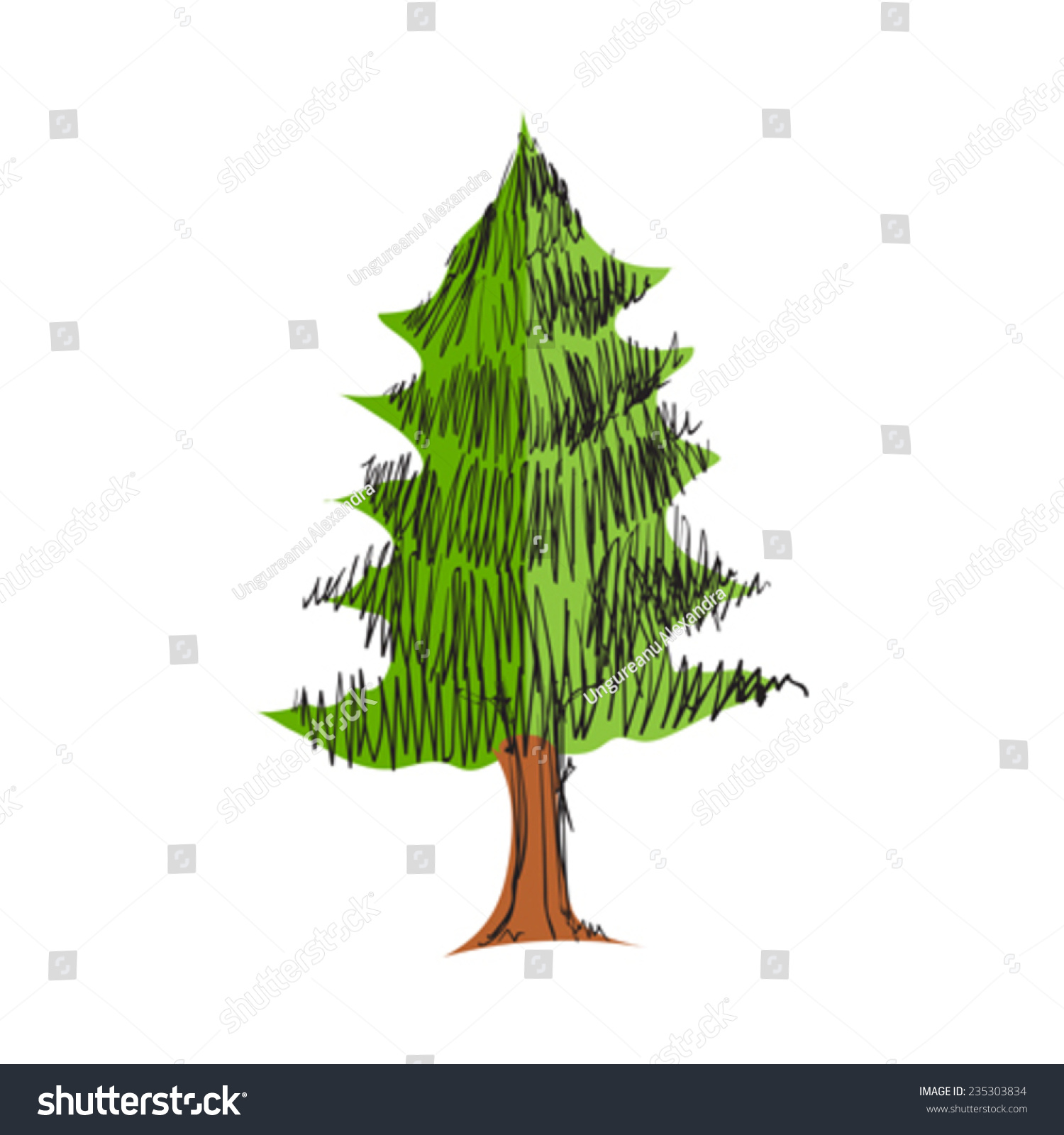 Uncategorized Pine Tree Sketch illustration pine tree sketch isolated on stock vector 235303834 of white background