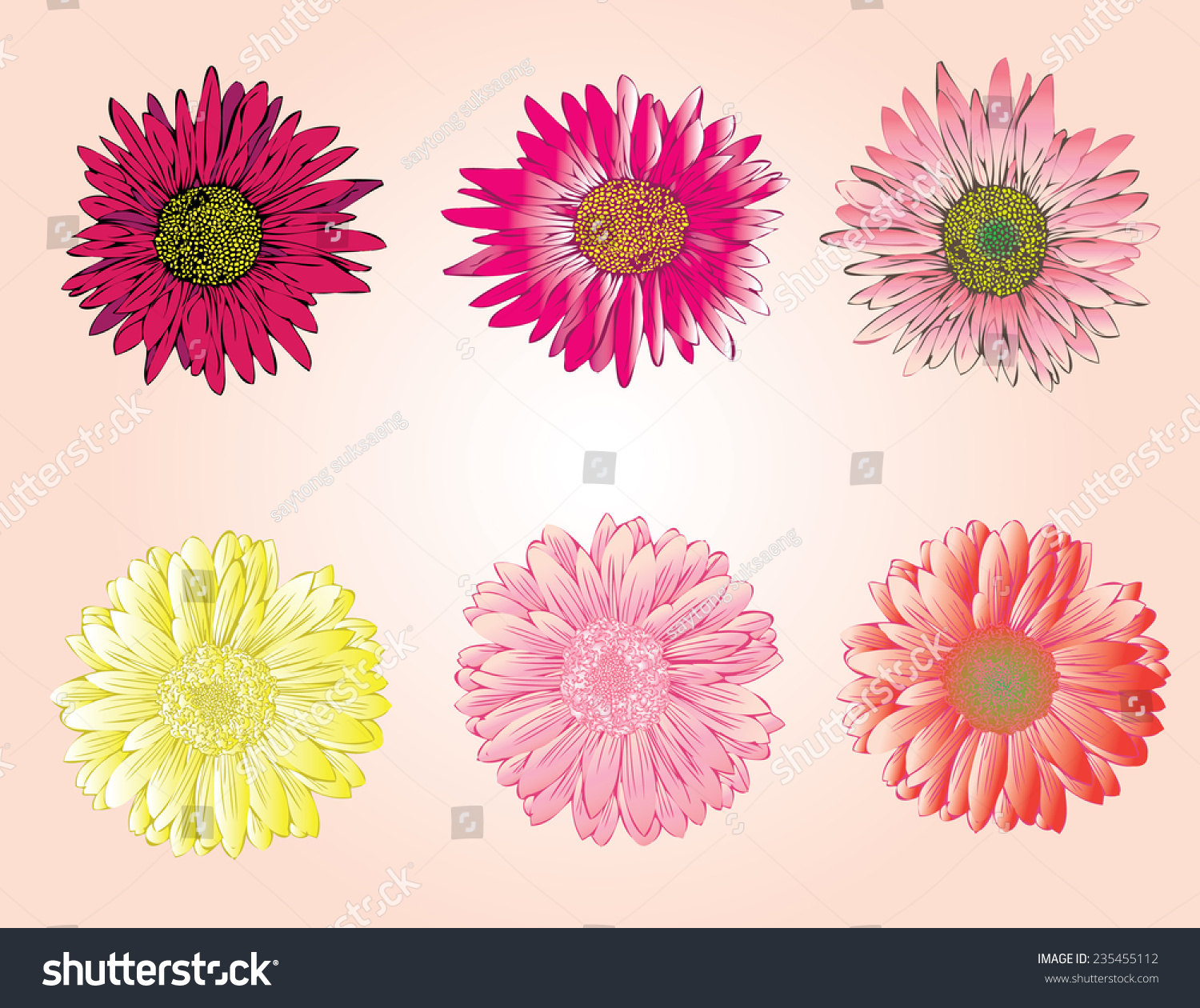 Colorful Flowers Drawing Marigold Flowers Elements Stock Vector