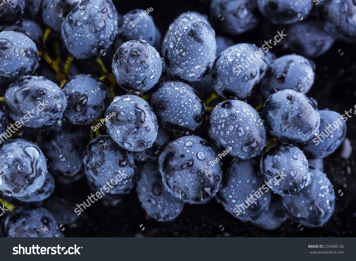 Cluster Grapes Water Drops Stock Photo 235698136 ...