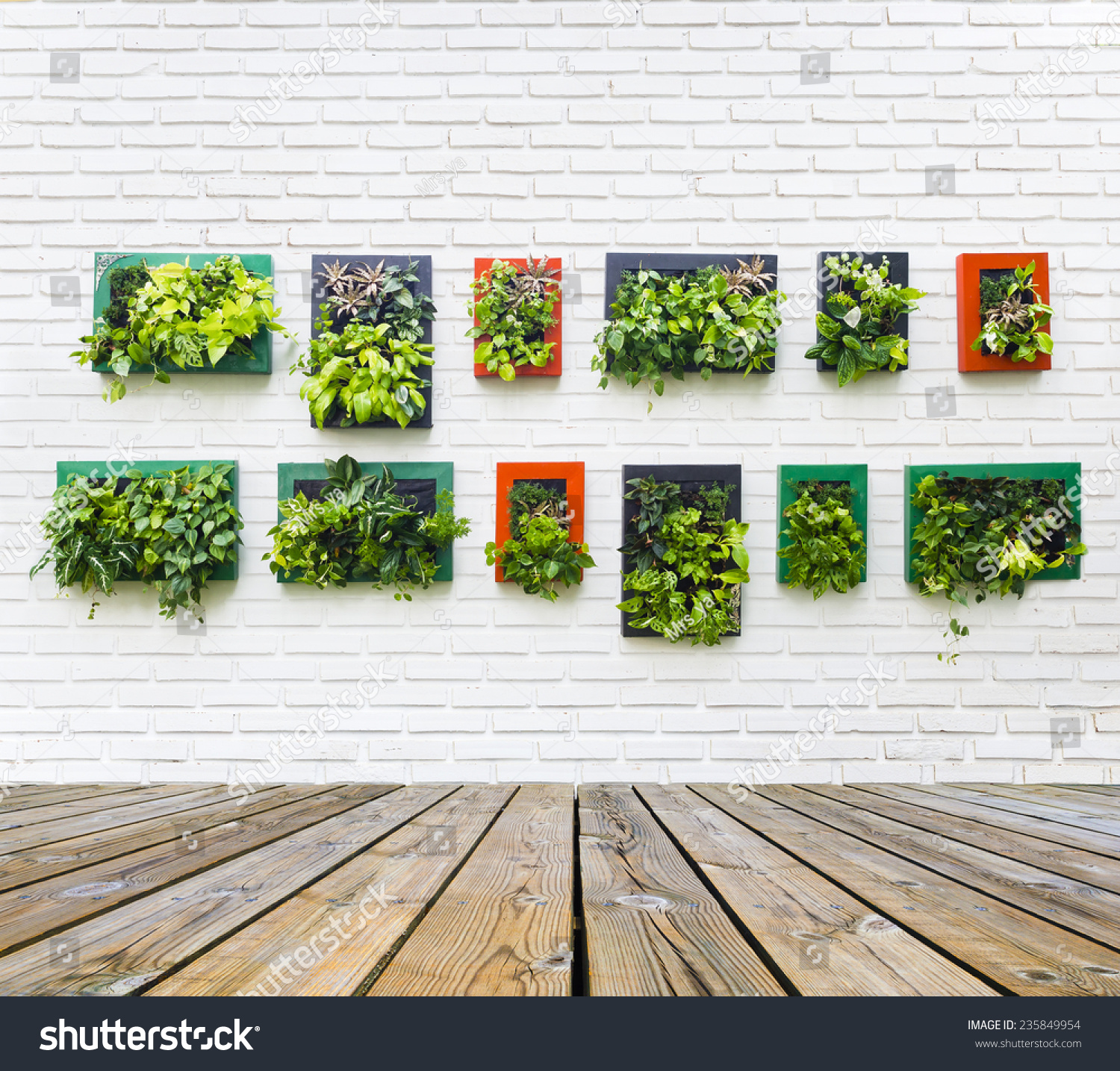 Vertical garden on white brick wall stock photo 235849954 vertical garden on white brick wall texture background amipublicfo Images