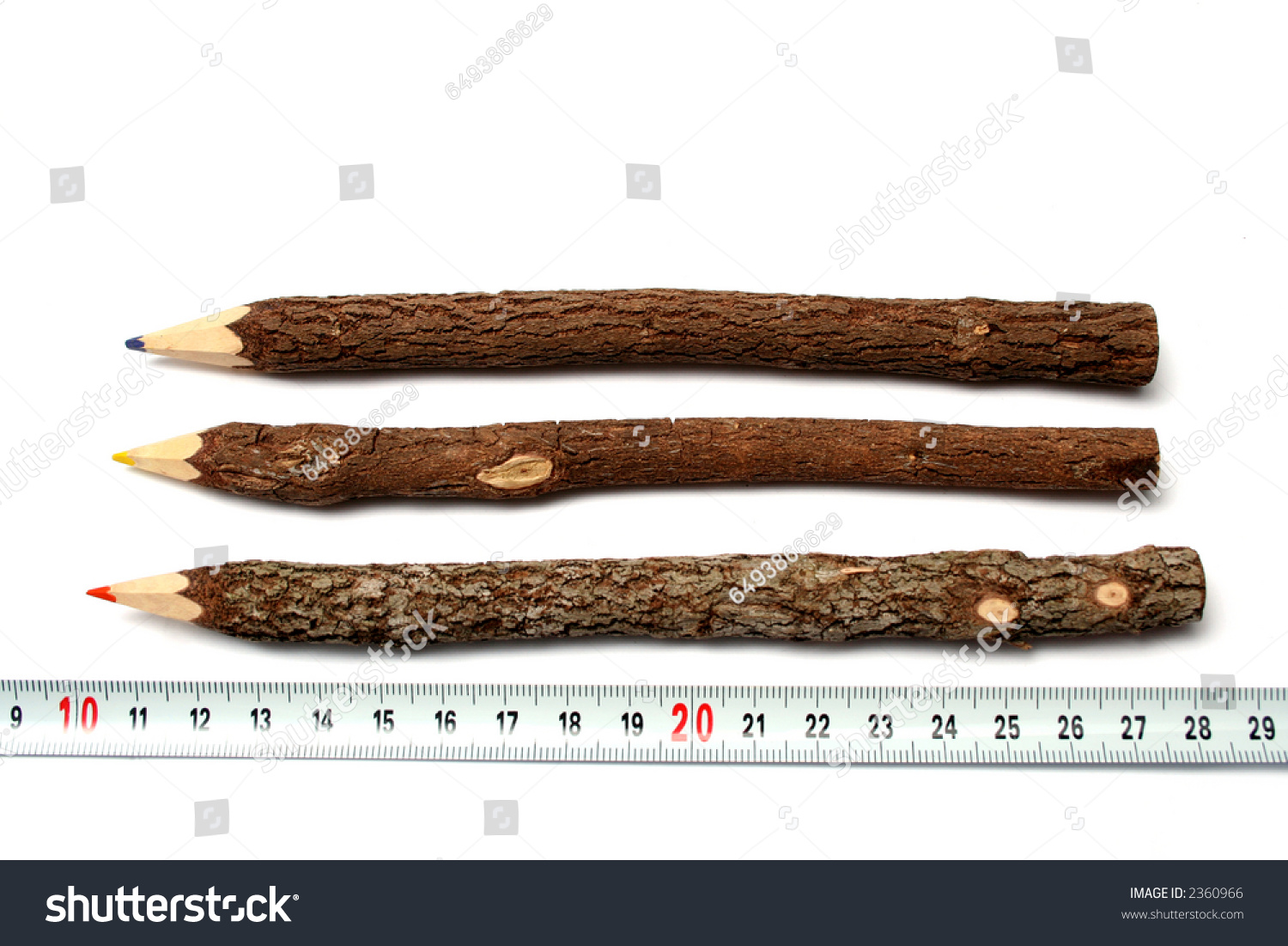 Three Unusual Pencils Made Branches Tree Stock Photo