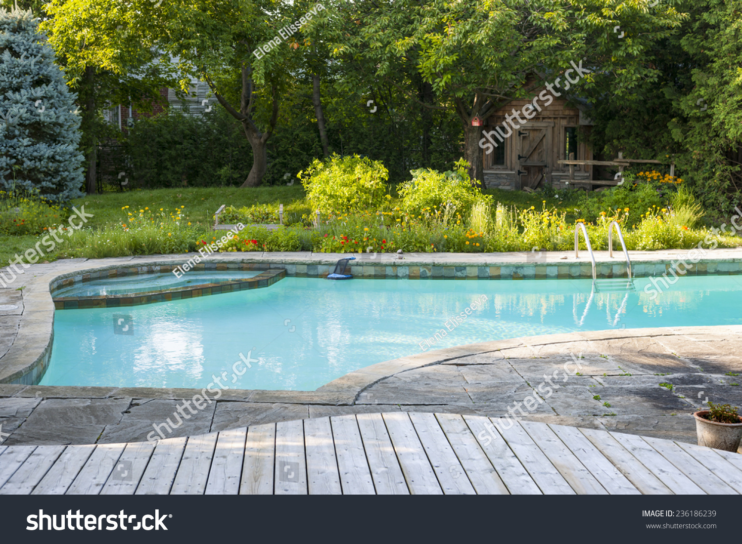 Backyard With Outdoor Inground Residential Swimming Pool Garden Deck And Stone Patio Stock