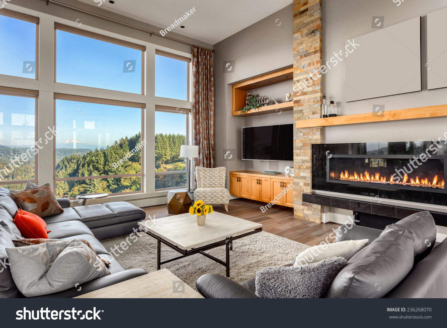 Furnished living room view on sunny stock photo 236268070 for Furnished room
