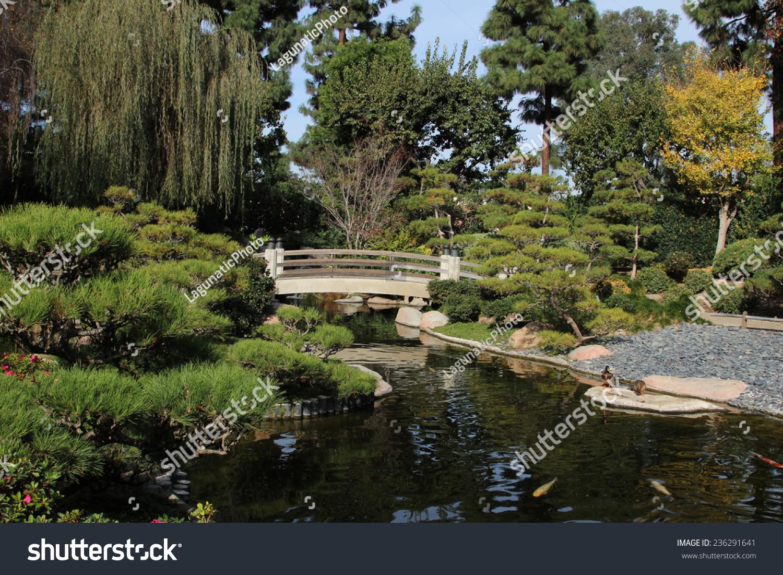 Koi pond earl burns miller japanese garden at california for Csulb japanese garden koi pond