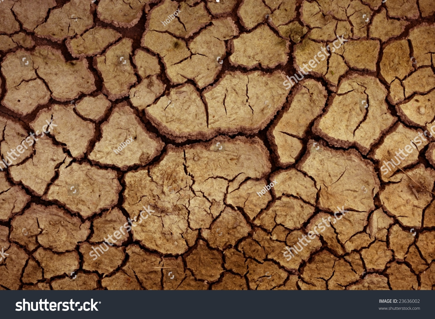 Dry red clay soil texture natural stock photo 23636002 shutterstock dry red clay soil texture natural floor background sciox Images