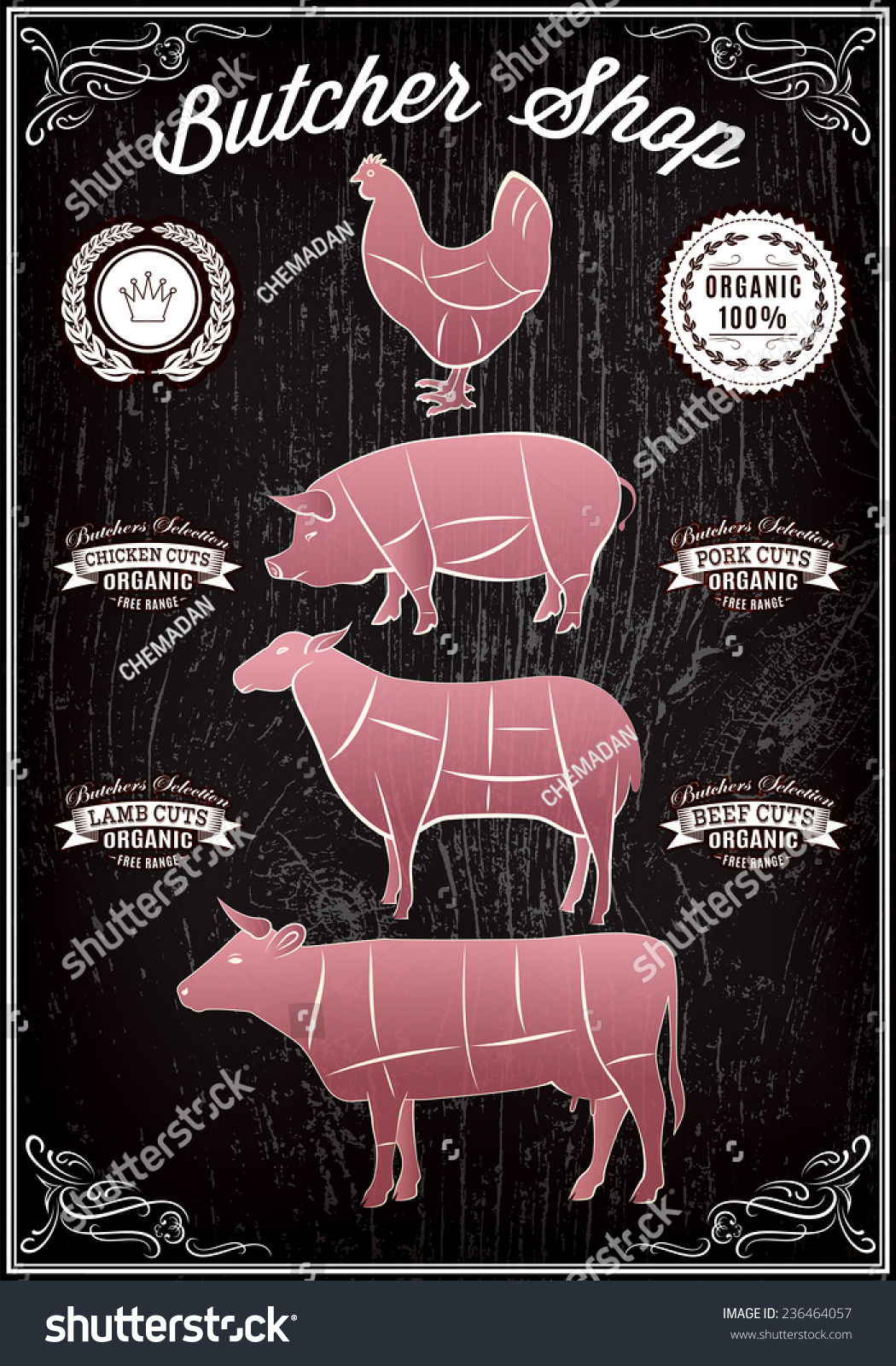 Vector Diagram Cut Carcasses Chicken Pig Stock Royalty Free Of Cow Lamb
