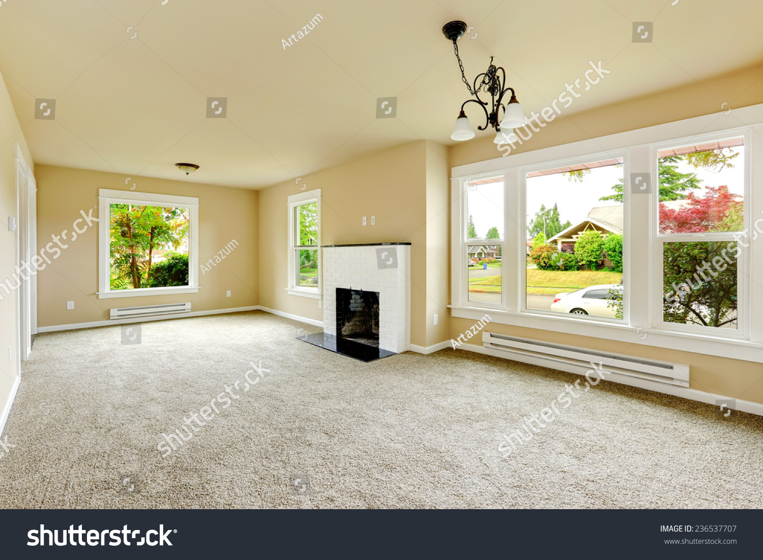 Empty Living Room Carpeting Picture