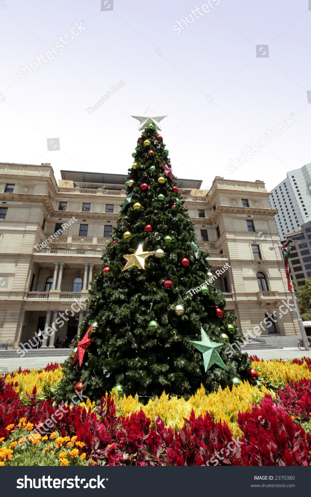 How to decorate tall outdoor christmas tree - Tall Outdoor Christmas Tree With Decoration Summer In Sydney Australia Preview Save To A Lightbox