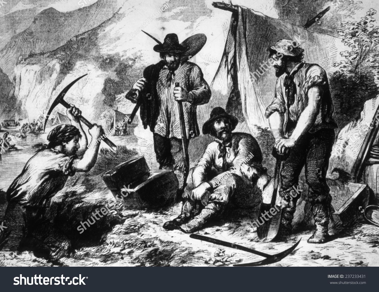 essay california gold rush