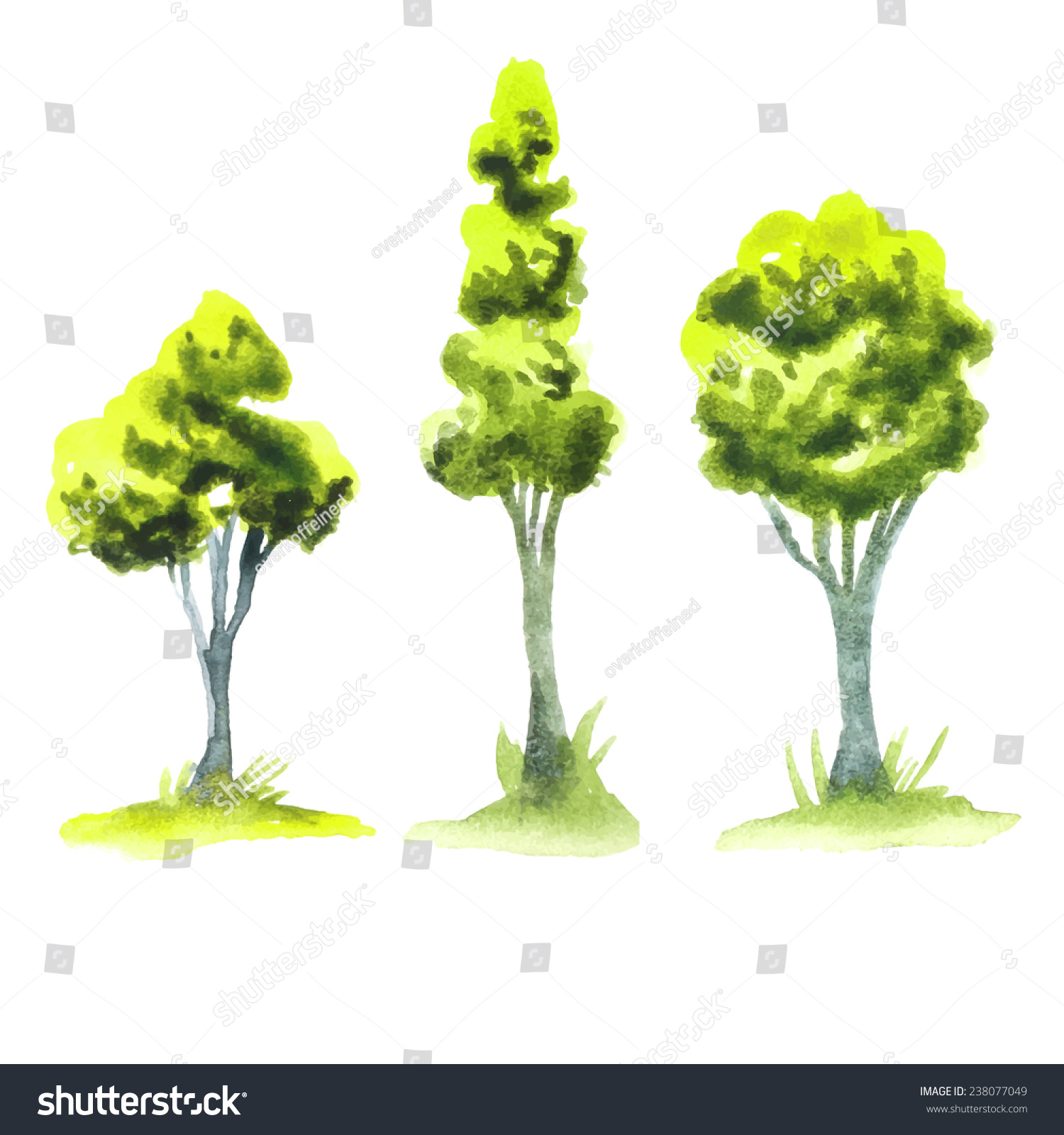 Vector Green Forest Watercolor Trees Organic Stock Vector 238077049 ...