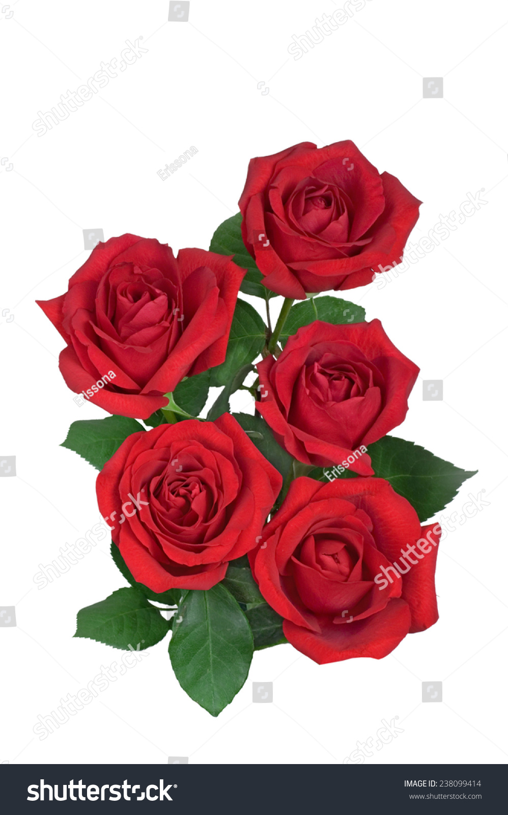 Royalty Free Red Rose Flower Bouquet Isolated On 238099414 Stock