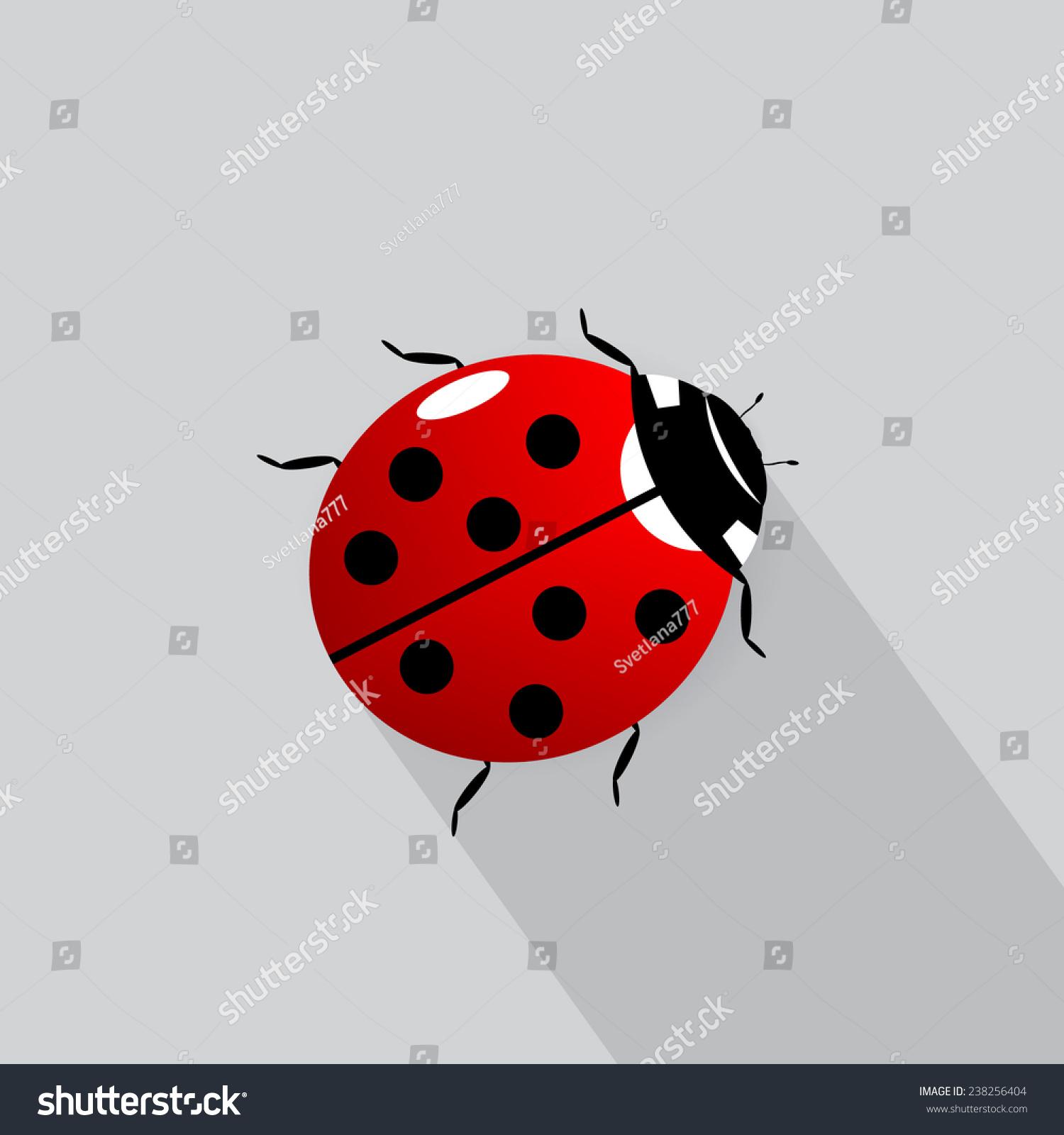 Vector illustration of a ladybug | EZ Canvas