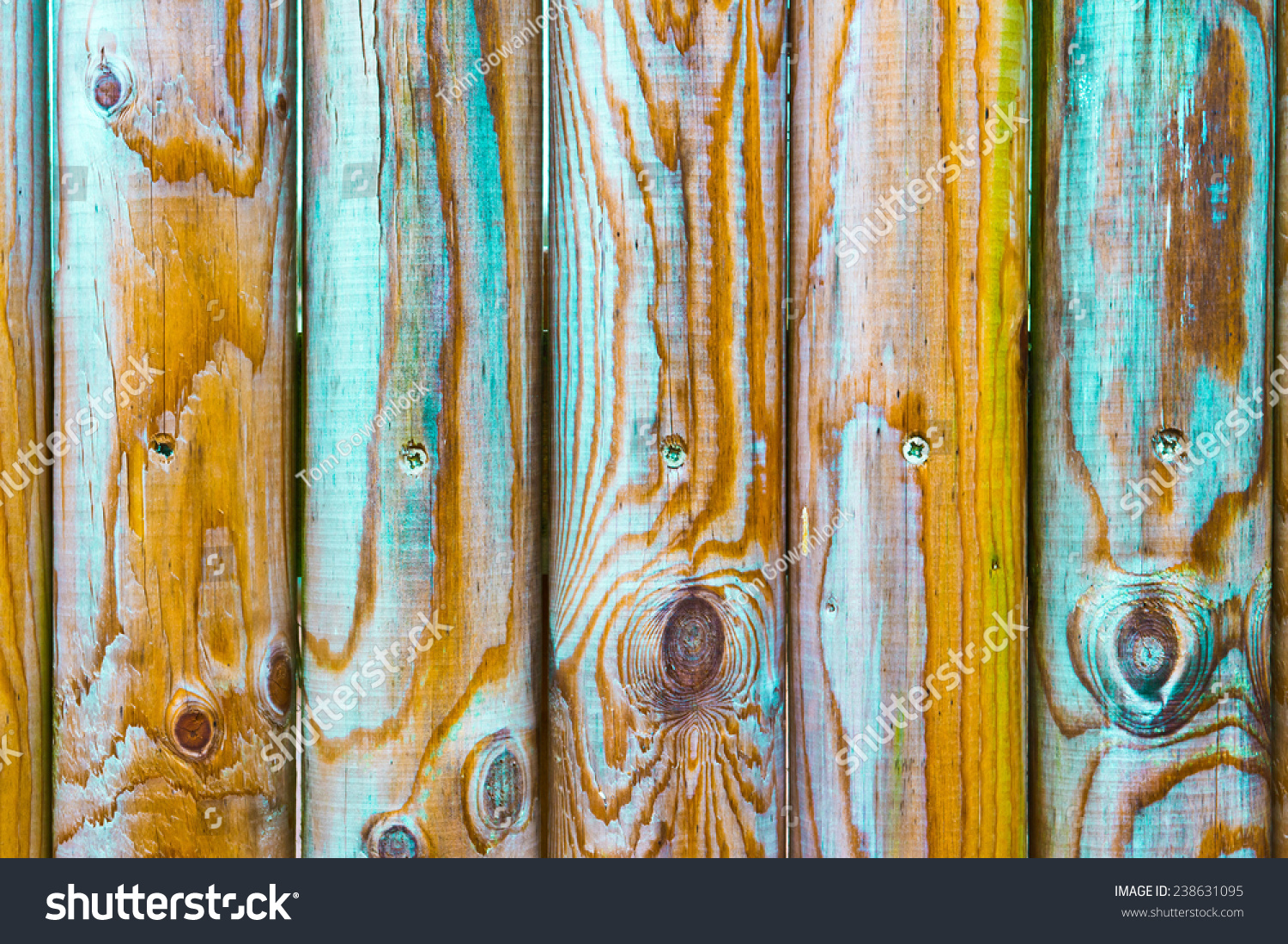 Vivid colours on wooden fence poles stock photo 238631095 vivid colours on wooden fence poles baanklon Image collections