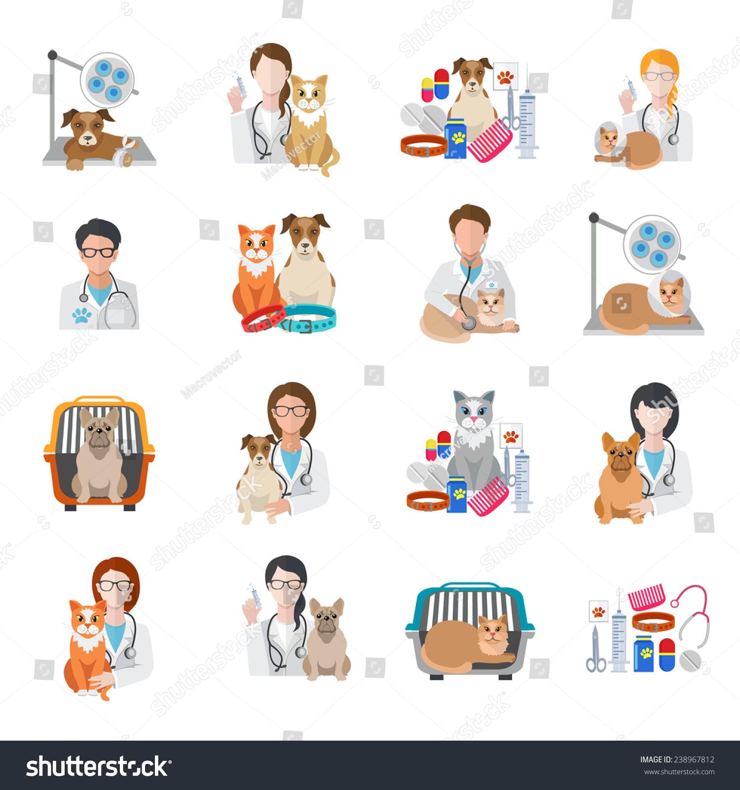 veterinary pet medical kit vet doctor stock vector 238967812