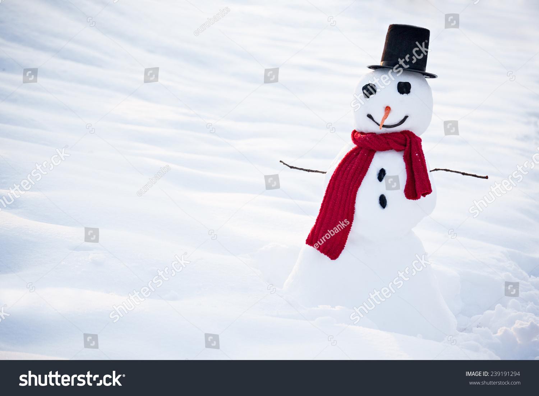 Winter real snowman
