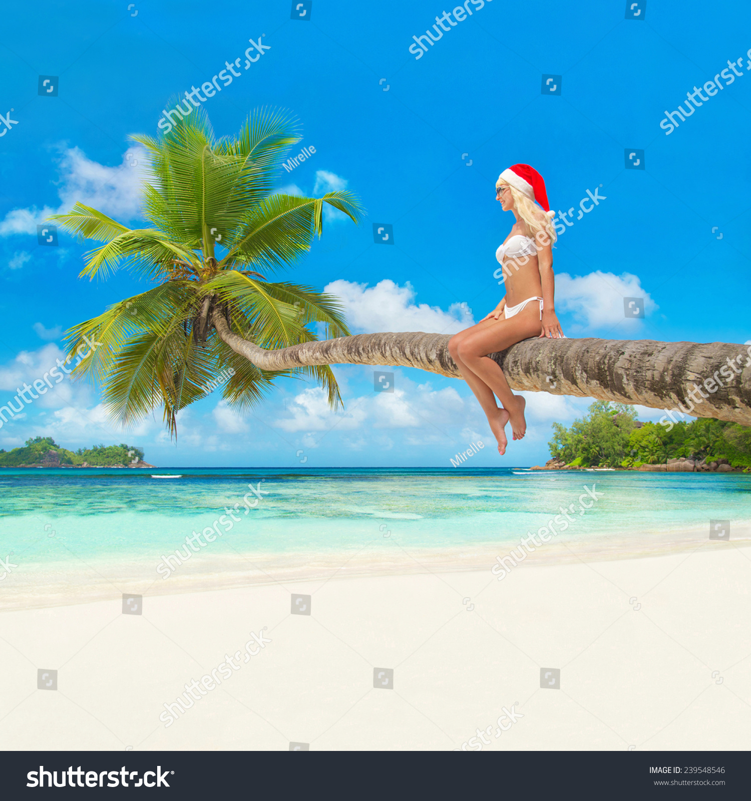 Royalty-free Cute blonde woman in bikini and santa… #239548546 Stock ...