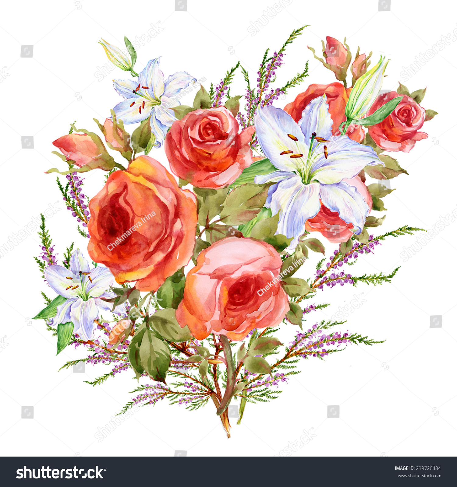 Watercolor Bouquet Beautiful Flowers Stock Illustration 239720434 ...