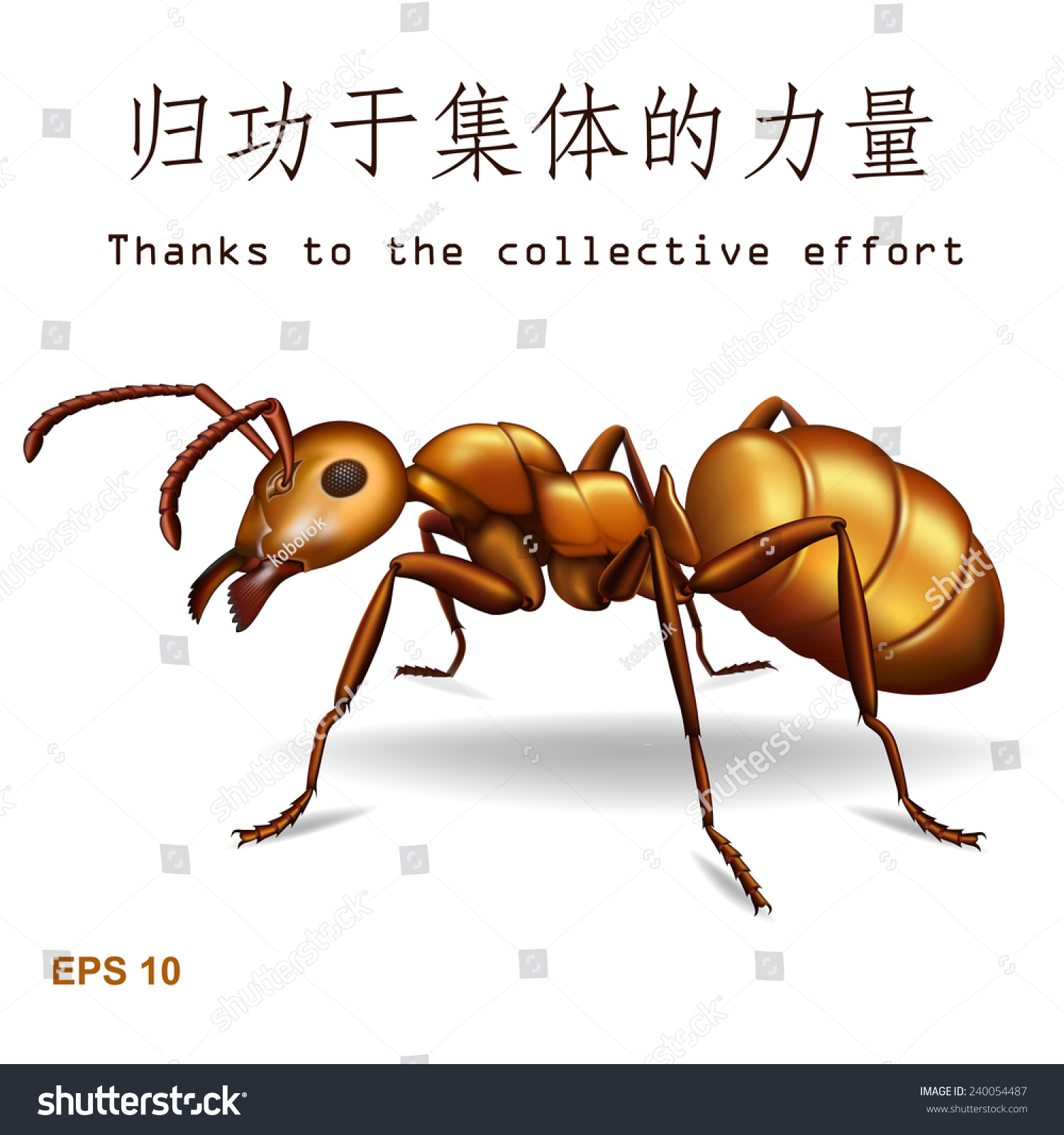 Realistic Golden Ant Isolated On White Stock Vector Royalty Free