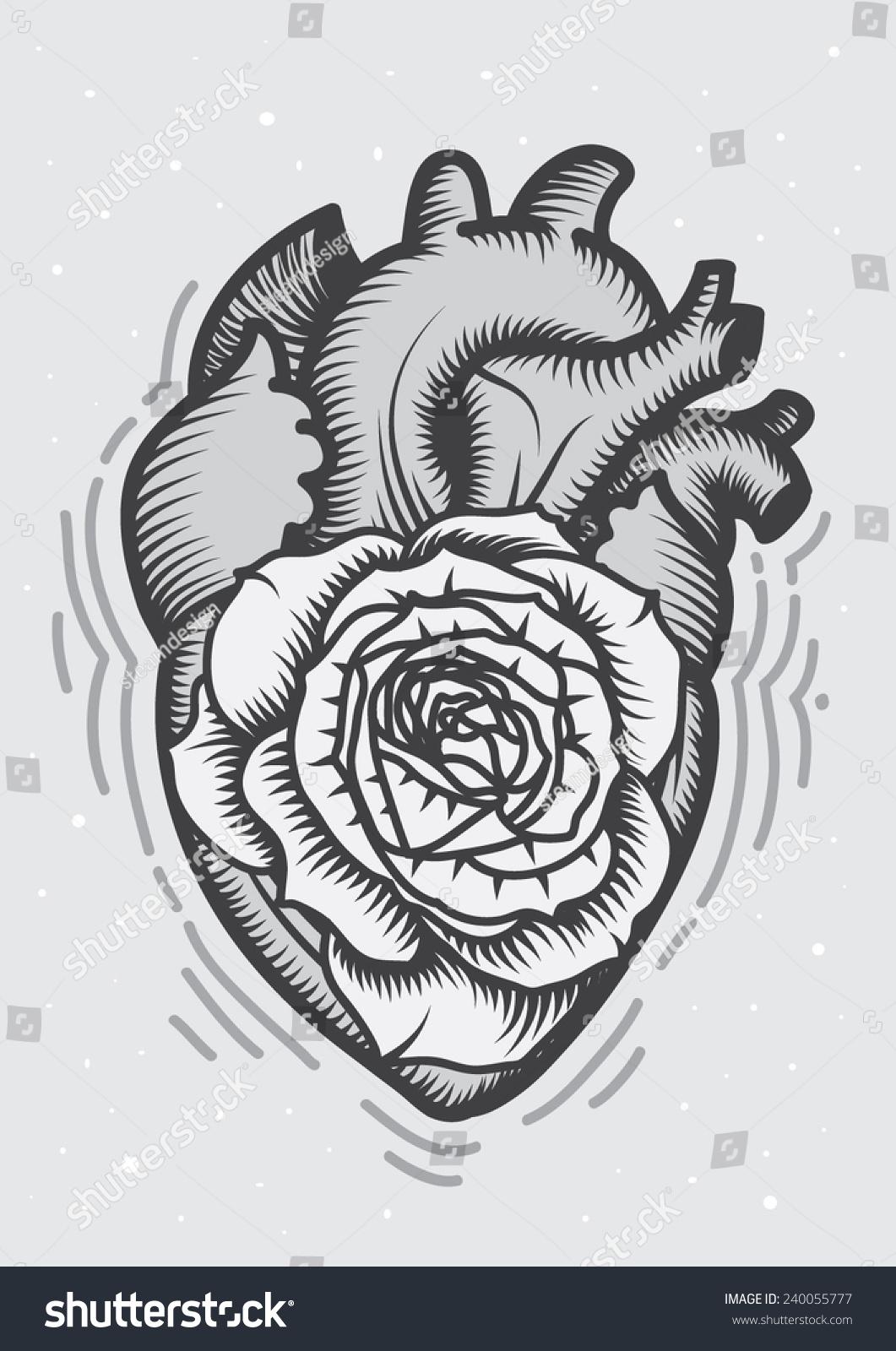 Anatomy Drawing Heart Rose Inside Stock Vector 240055777 - Shutterstock
