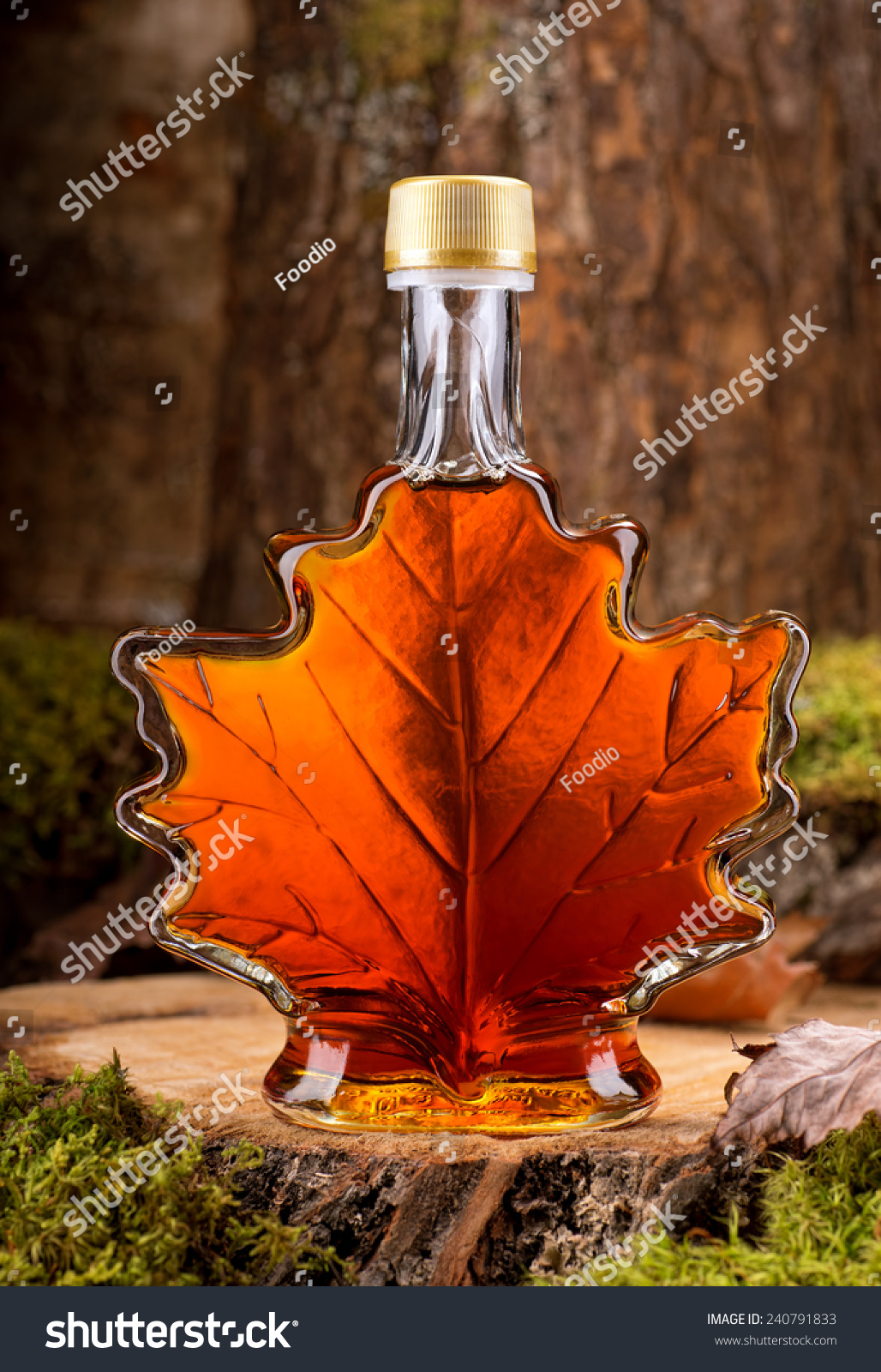 bottle delicious maple syrup hardwood forest stock photo 240791833