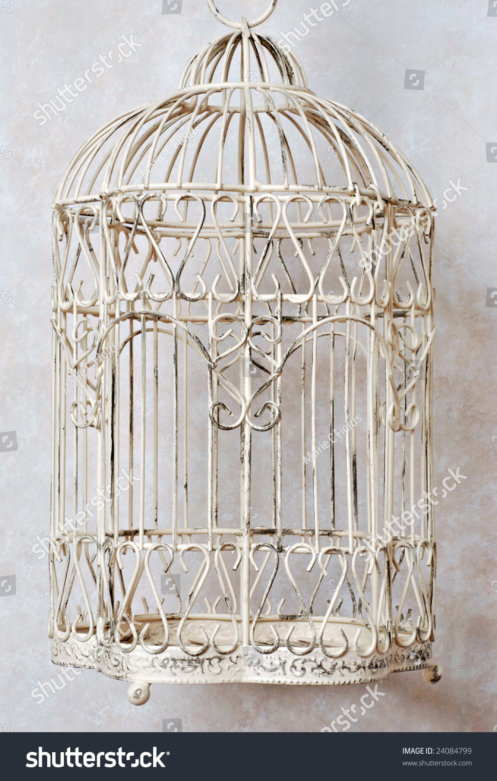 Classic Decorative Bird Cage Faux Marble Stock Photo Edit Now