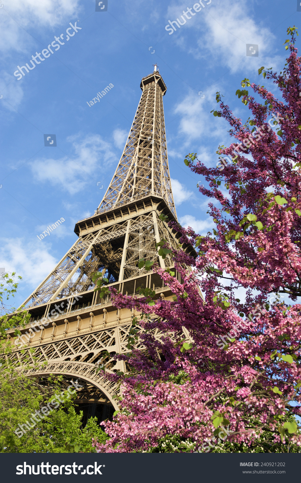 Paris spring flowering trees eiffel tower stock photo royalty free paris in the spring with flowering trees at the eiffel tower in blue sky izmirmasajfo