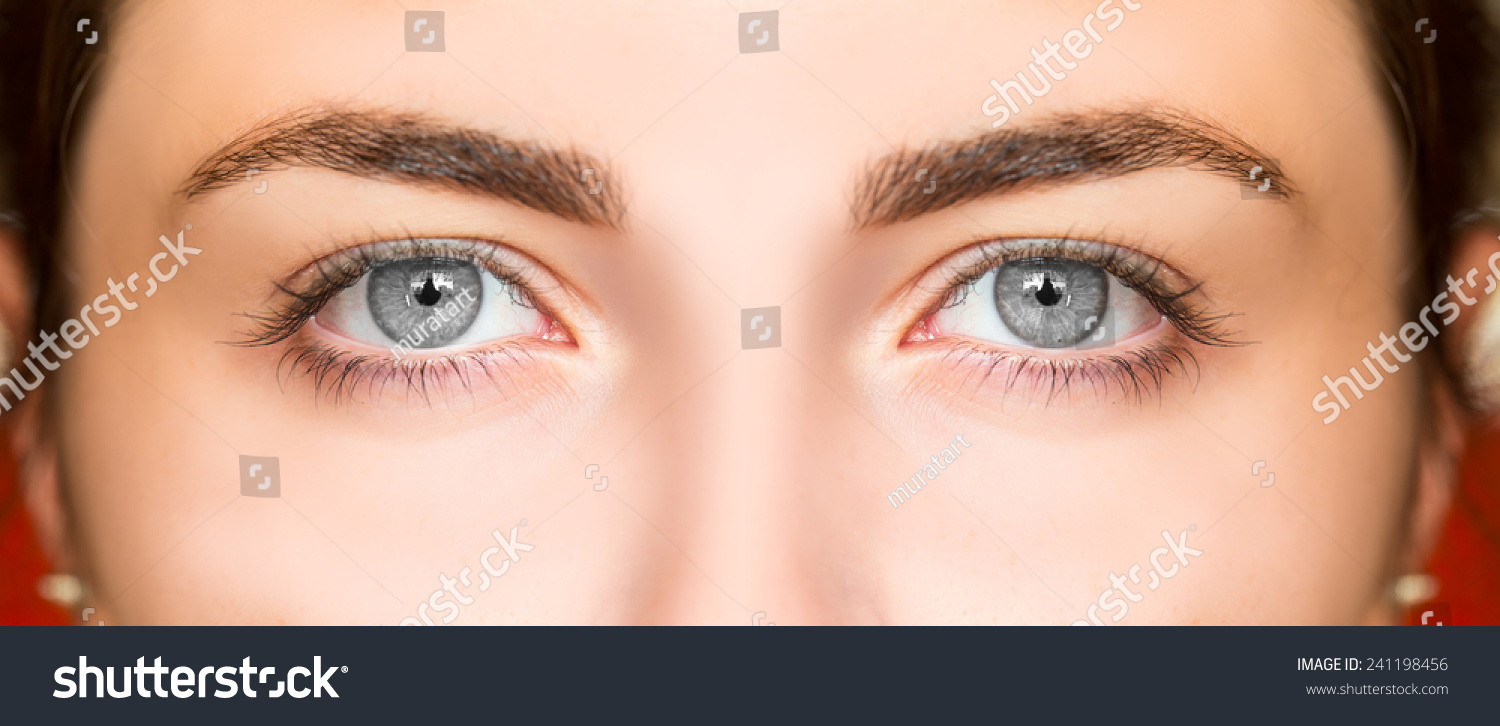 Croatian parliamentgovernment eye color statistics all other eye colors fall into the mixed dark category mixed is usually reserved for green greenish eyes example of mixed eye colors that would usually geenschuldenfo Images