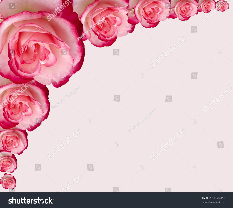 Damask Rose Frame Isolated On White Stock Photo (Royalty Free ...