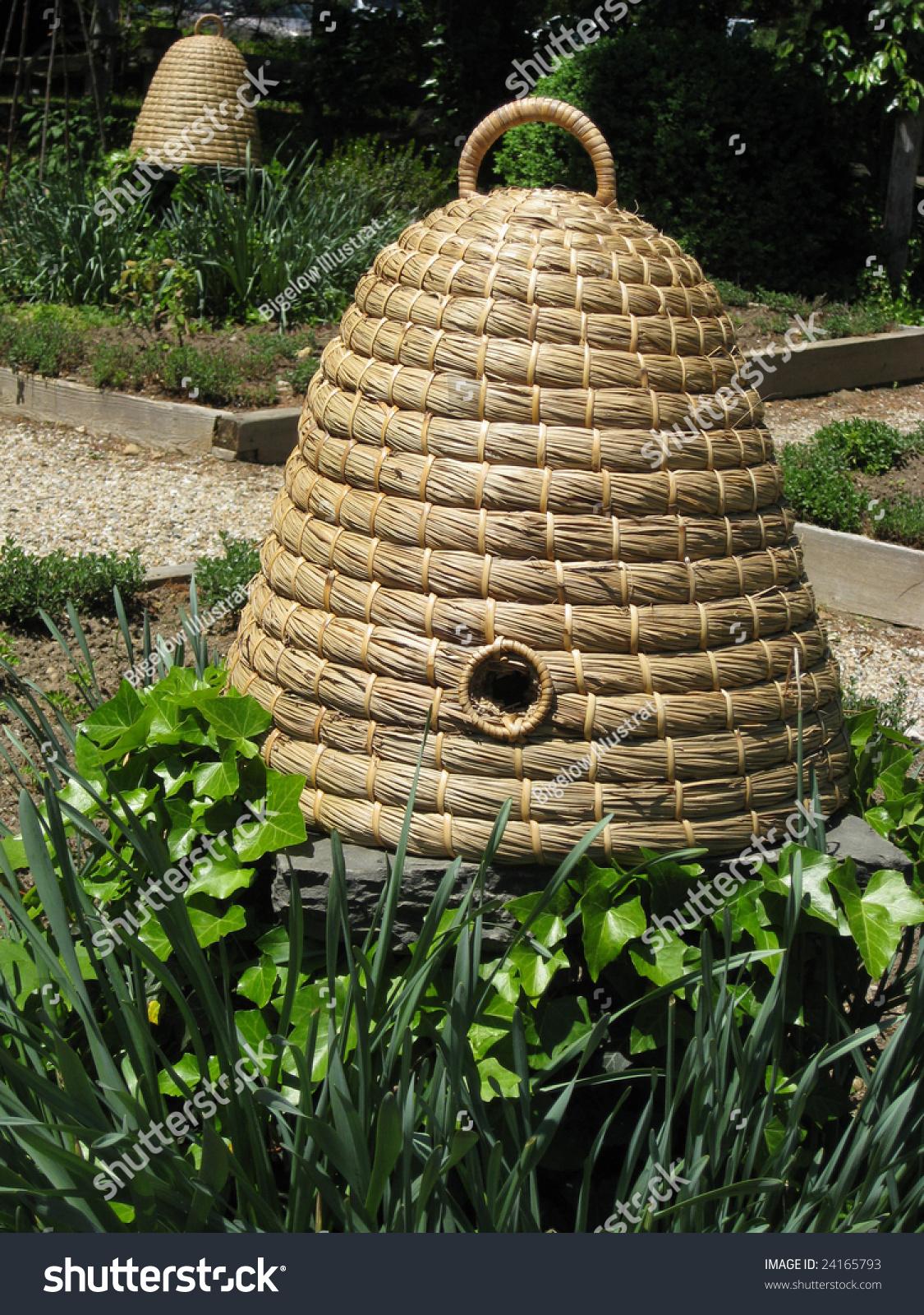 Wicker bee hive stock photo 24165793 shutterstock - Wicker beehive basket ...