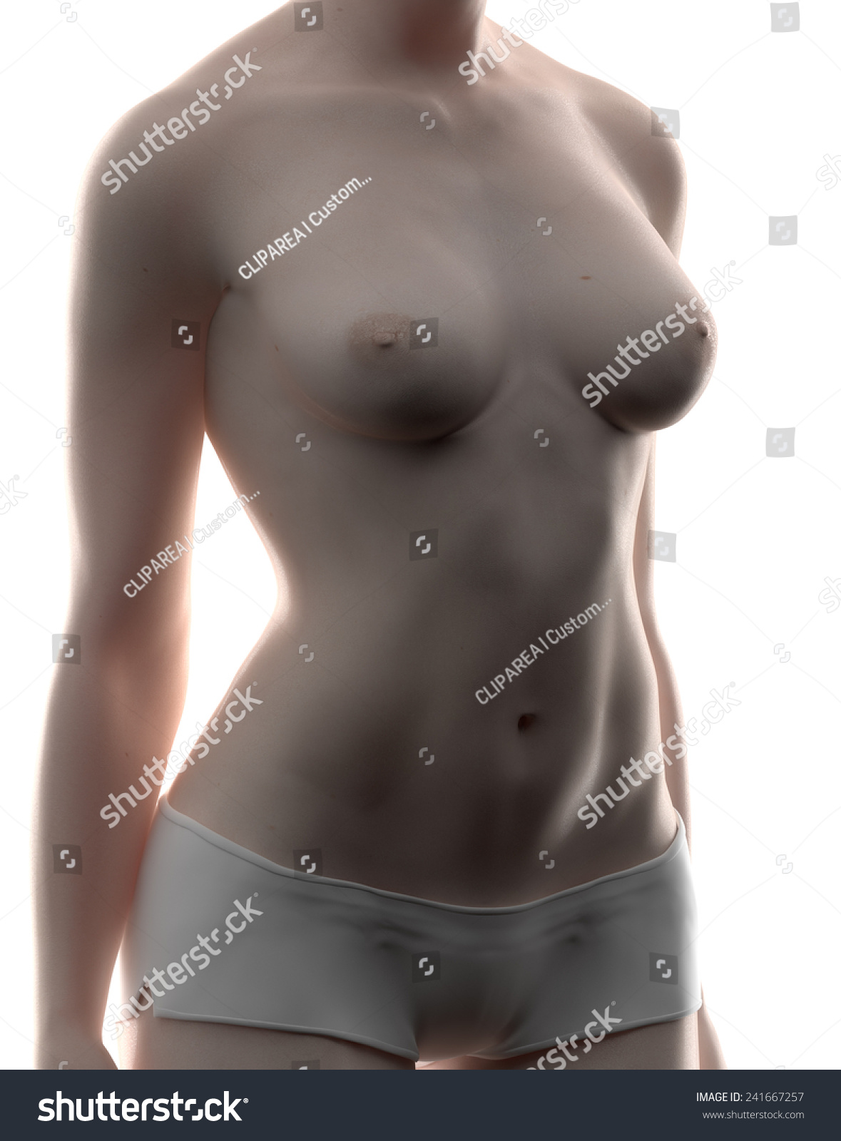 Real View Female Anatomy Pose Stock Illustration 241667257