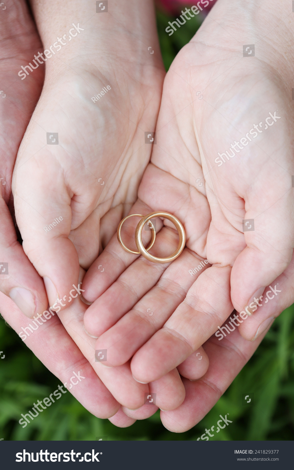 Our Wedding Rings Stock Photo (Royalty Free) 241829377 - Shutterstock