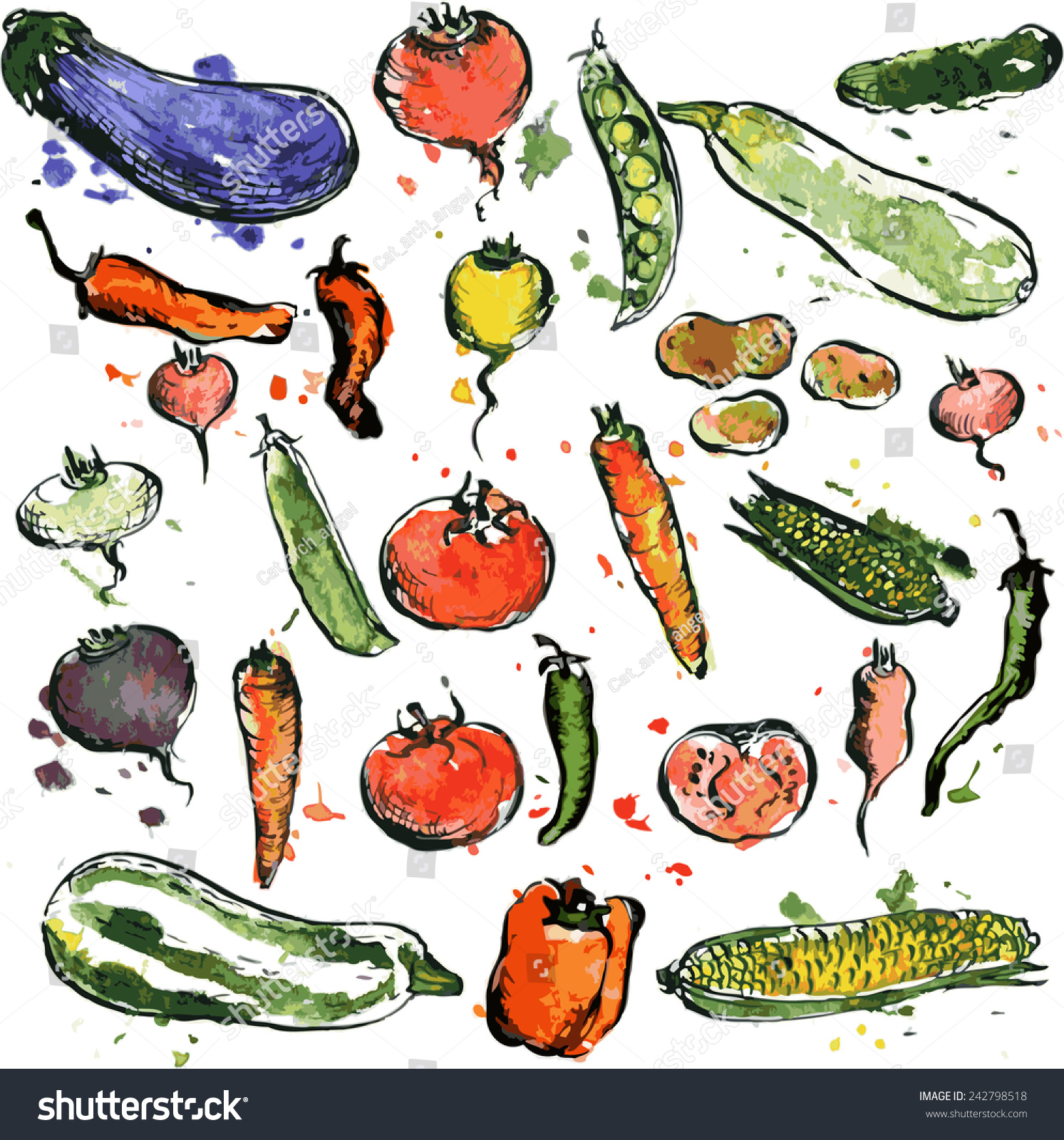 set drawing vegetables colored by watercolor stock vector