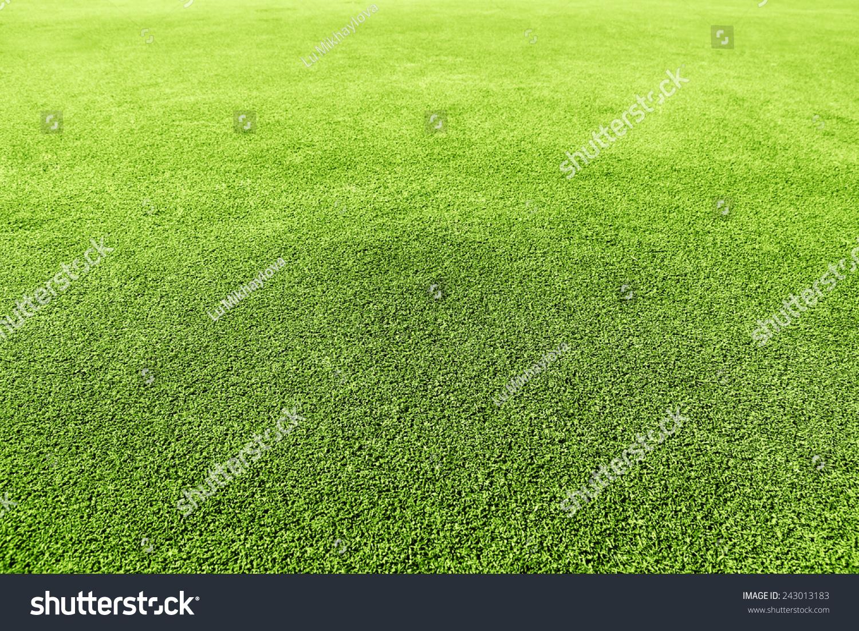 Golf Green Grass Texture Close-Up Stock Photo 243013183 ...