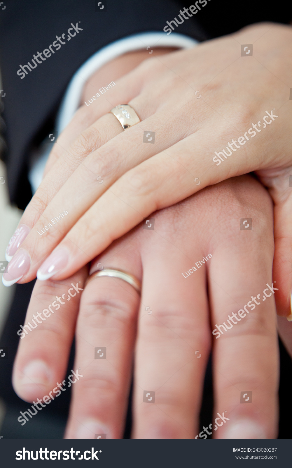 the bride and groom\'s hand close-up with wedding rings | EZ Canvas
