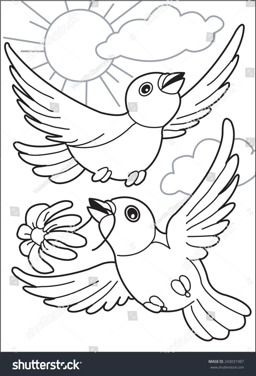 soaring birds two birds fly sun stock vector 243031987 shutterstock