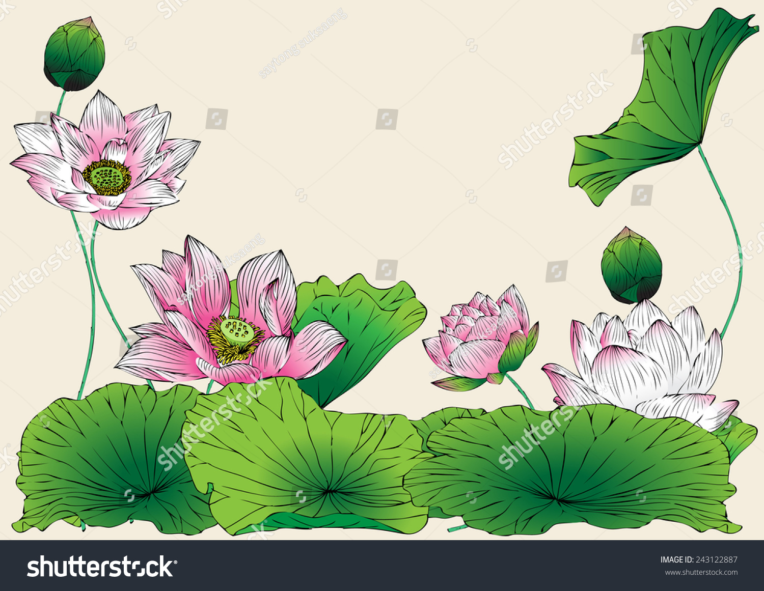 Lotus Vector Drawing For Background And Text Abstract Lotus Symbols Illustrat