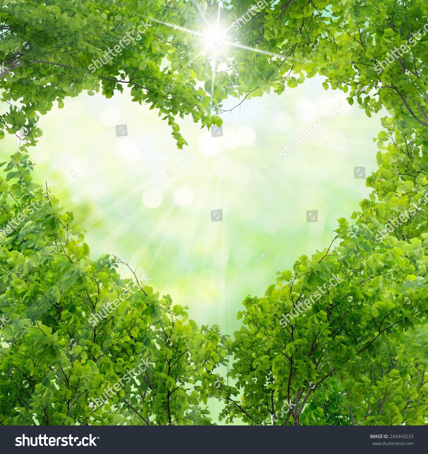 green leaves background stock photo 243443233 shutterstock