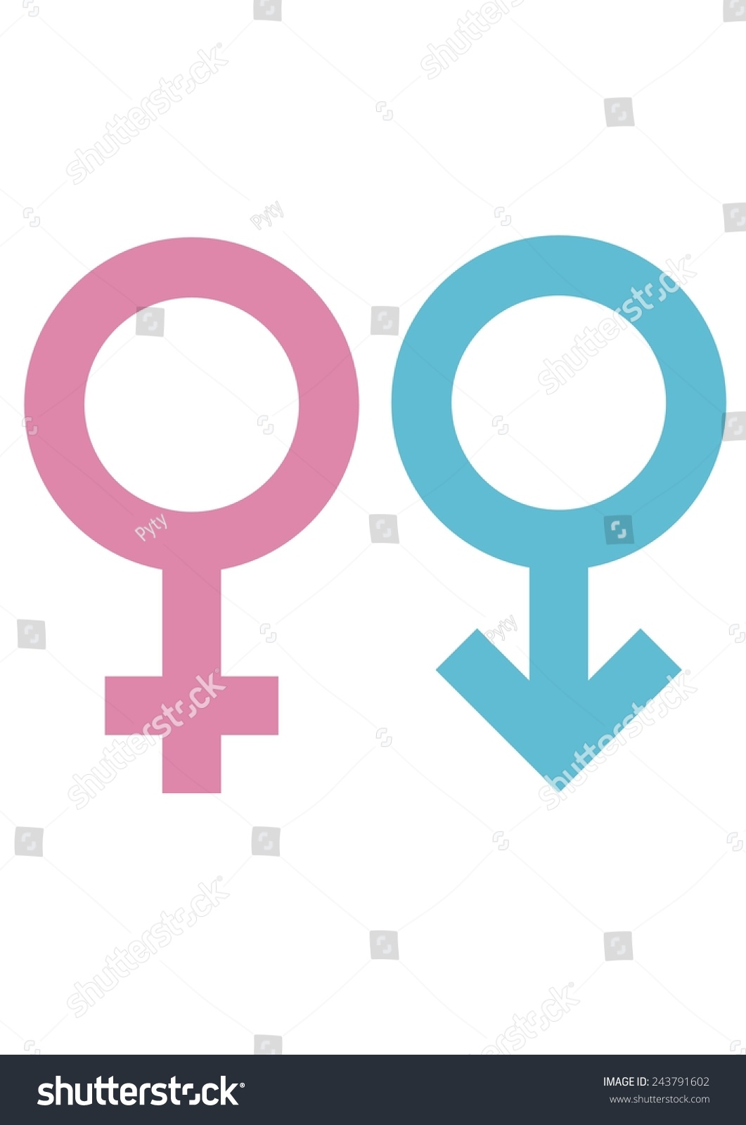 Gender Signs Male Female Circles Cross Stock Vector Royalty Free