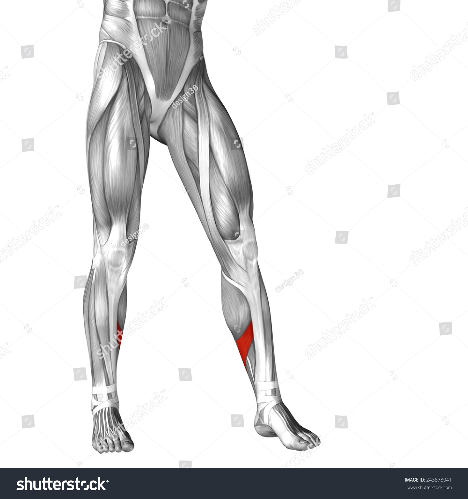 Royalty Free Stock Illustration Of Concept Conceptual 3 D Front