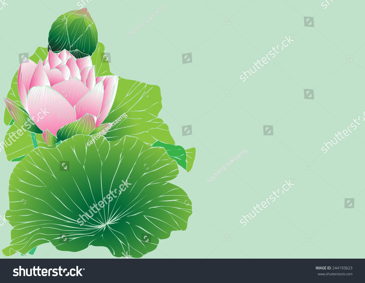 Vector Lotus Flower Painting Graphic Stripes Stock Vector Royalty