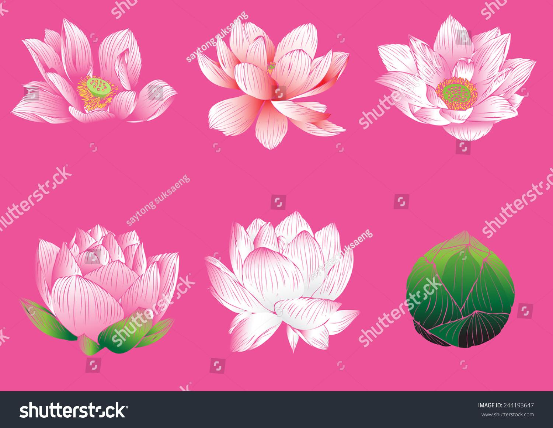 Lotus flower graphic 88054 movieweb lotus flower graphic izmirmasajfo