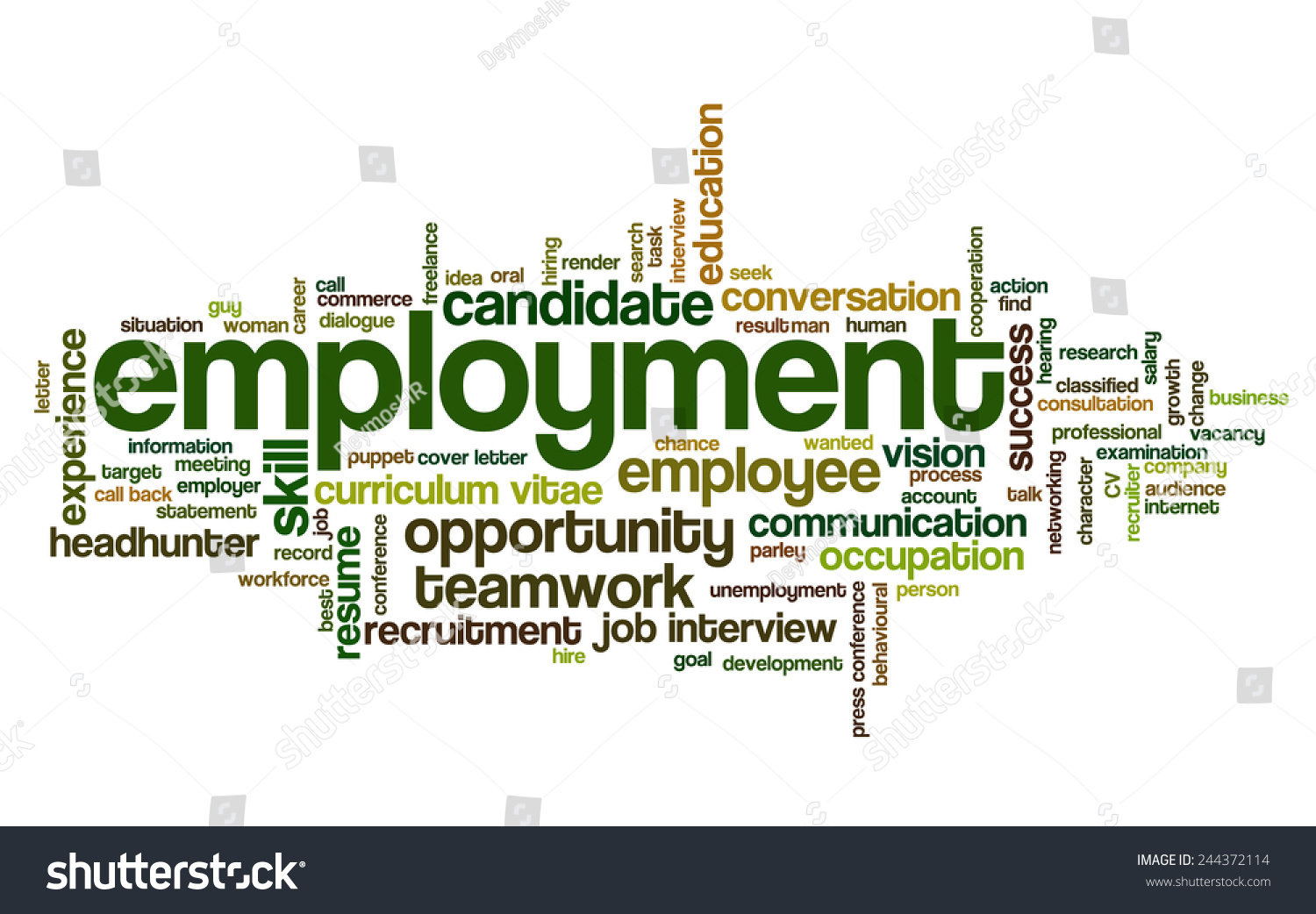 word cloud related job interview employment stock vector 244372114 word cloud related to job interview employment and recruitment