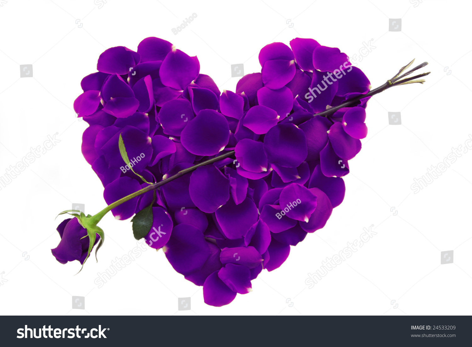 Purple Rose Petal Heart With Arrow On White Background