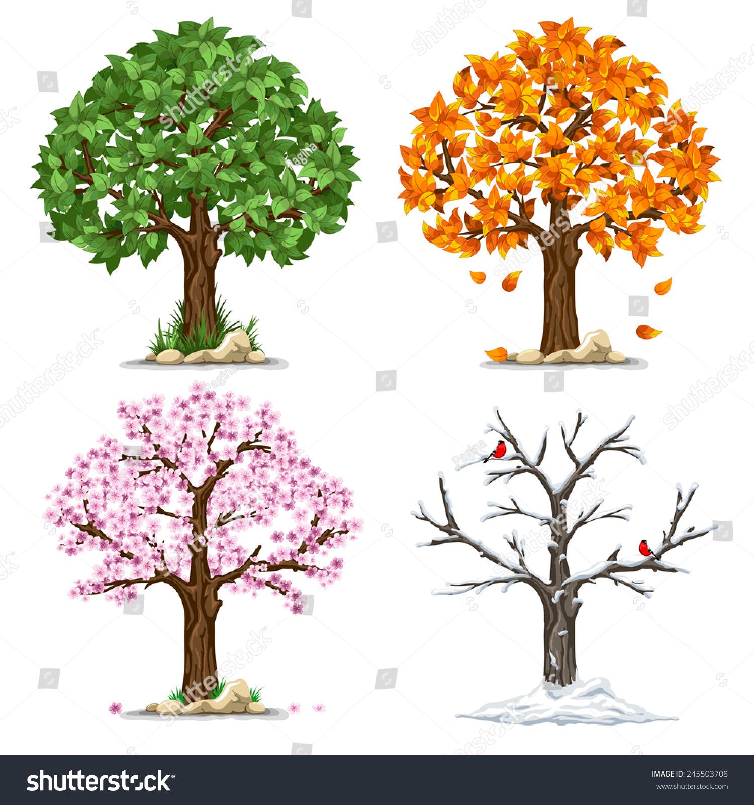 Tree Four Seasons Spring Summer Autumn Stock Vector ...